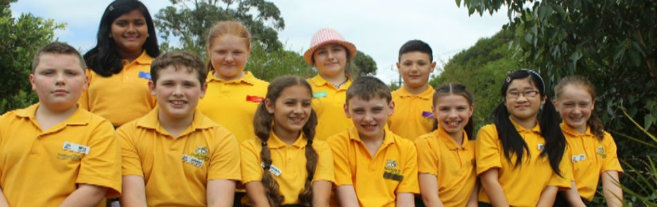 Bundoora Primary School Leadership Group 2015